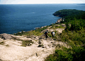 Bar Harbor Vacation Rentals - View From Gorham Mountain