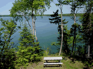 Bar Harbor Vacation Rentals